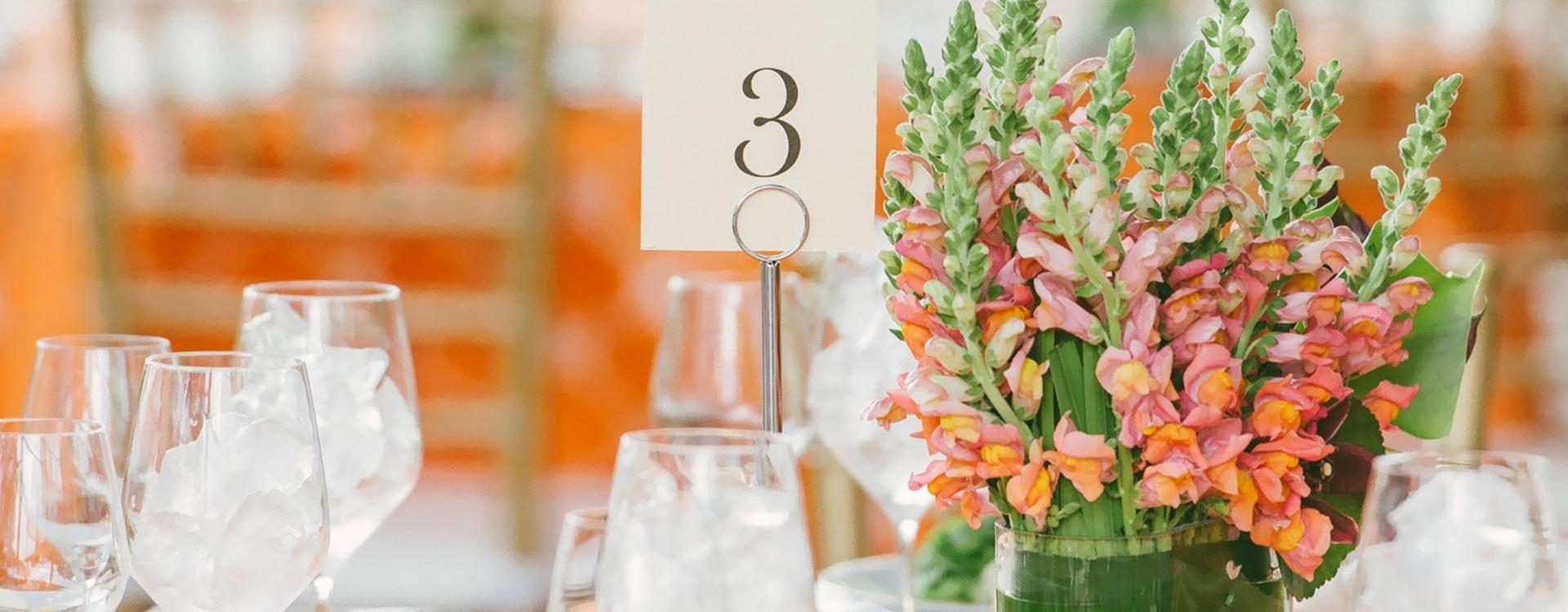 Plan Your Wedding in Hotel Scottsdale